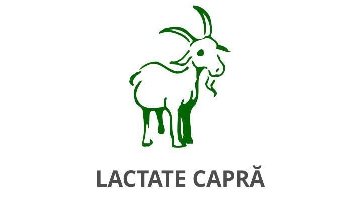 lactate capra